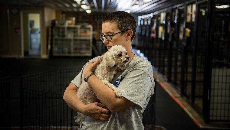 A man hug the dog
